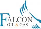 Client logo - Falcon